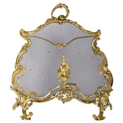 French 19th Century Rococo Style Fire Screen