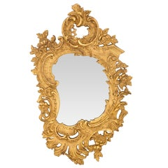 French 19th Century Rococo Style Giltwood Mirror
