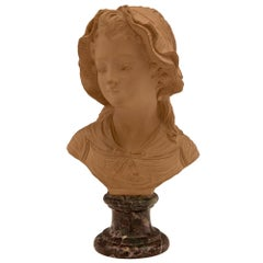 French 19th Century Terracotta and Rosso Levanto Marble Bust