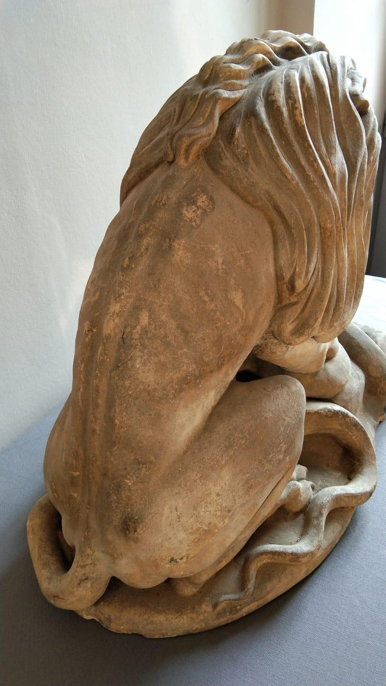19th Century French Terracotta Statue of a Lion For Sale 1