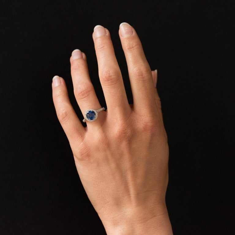 Platinum ring, dog's head hallmark. Contemporary, this platinum ring is set with 4 claws on its top with a round Ceylon sapphire which rests on a circle set with diamonds. From profile, the slightly raised basket and the start of the ring are
