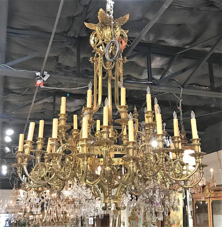 Remarkable large French 36-light gilt bronze cherubic chandelier of superior quality. The ornately decorated crown with leaf-sprays atop elaborately scrolled arms adorned with acanthus leaves, flower heads, and cast bronze cherubs holding fringed