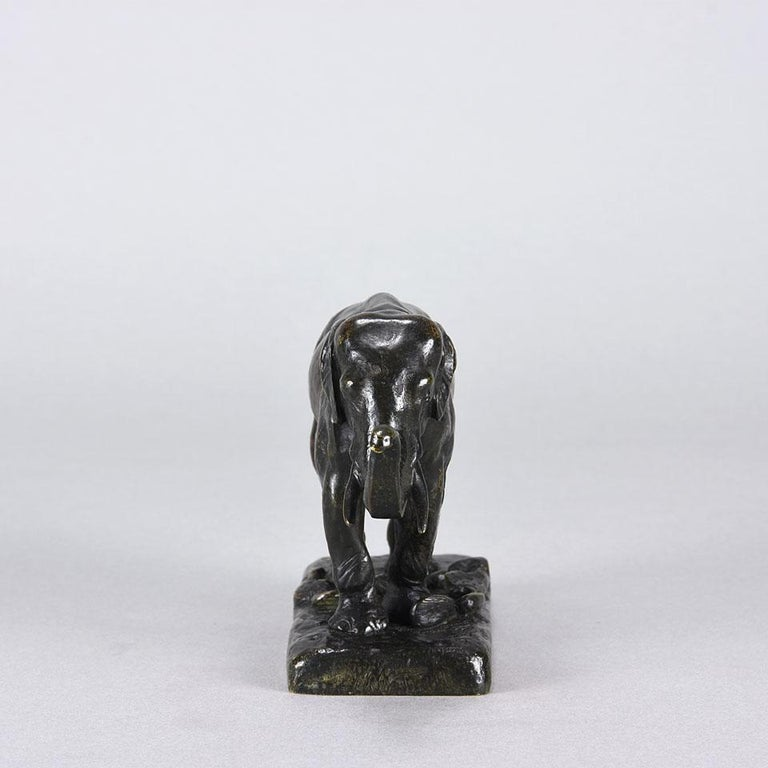 A majestic late 19th century French Animalier bronze study of an Asian elephant with its trunk raised modelled with perfect realism and character. The bronze with very fine rich brown and deep green slightly worn patina. Raised on a naturalistic