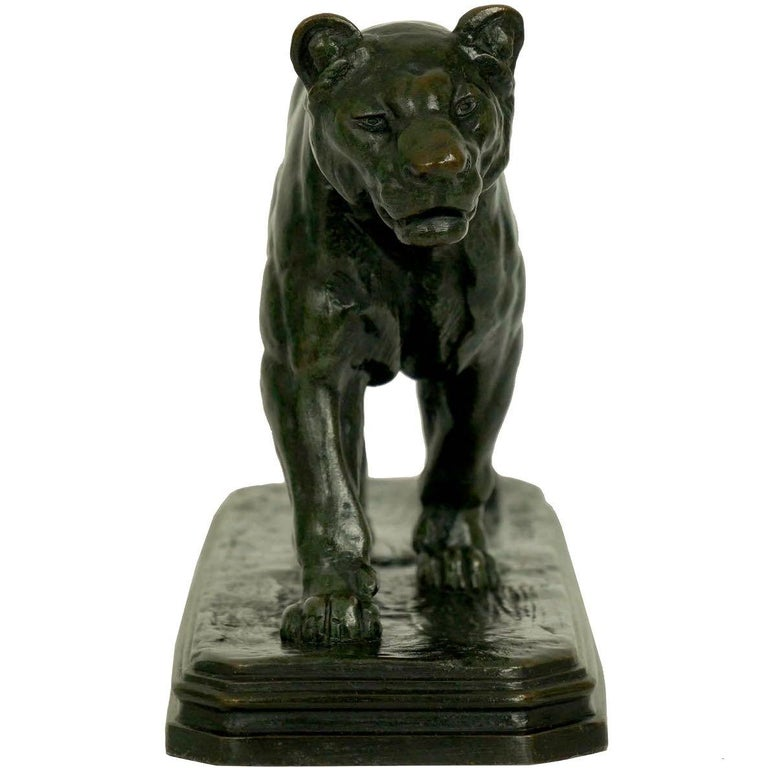 French Antique Bronze Sculpture of Marching Lion by Paul Edouard Delabrierre For Sale 11