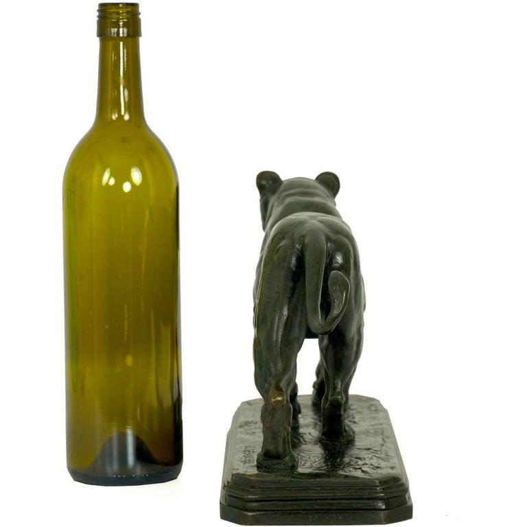 French Antique Bronze Sculpture of Marching Lion by Paul Edouard Delabrierre For Sale 3