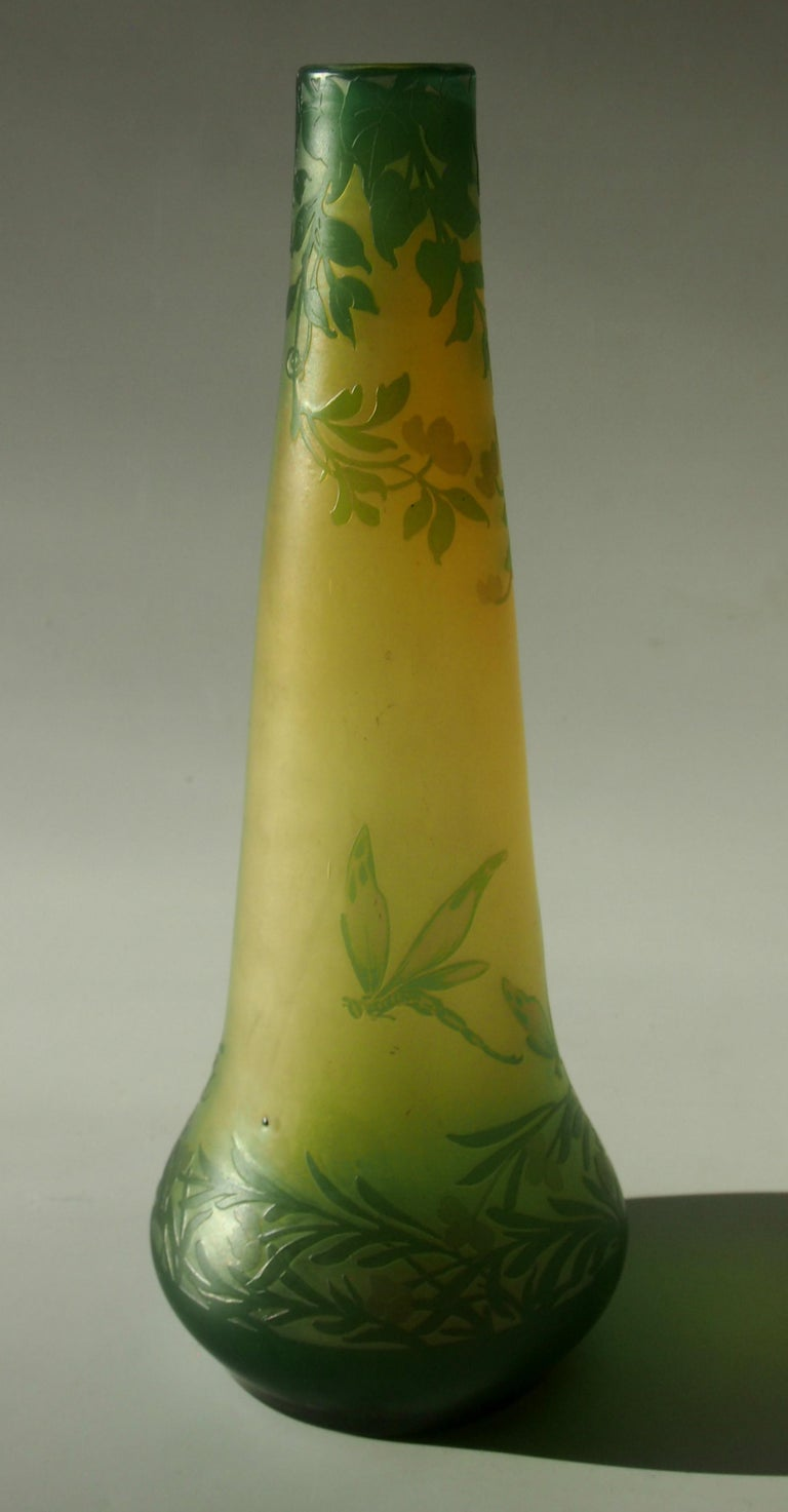 Early 20th Century French Art Nouveau DeVez Dragonfly Cameo Glass Vase For Sale