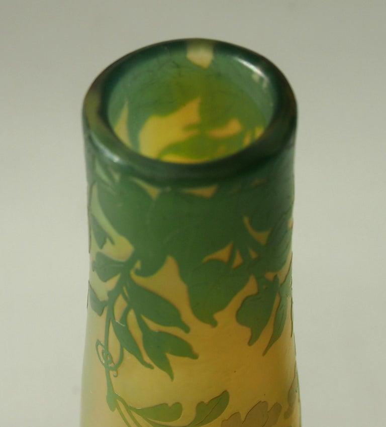 Art Glass French Art Nouveau DeVez Dragonfly Cameo Glass Vase For Sale