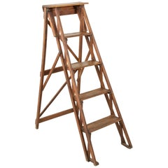 French Ash Library Ladder or Shelves with Five Steps, circa 1900
