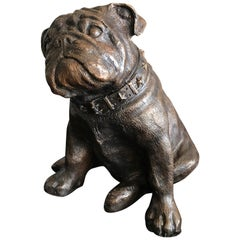 French Bronze Seated Bull Dog Sculpture