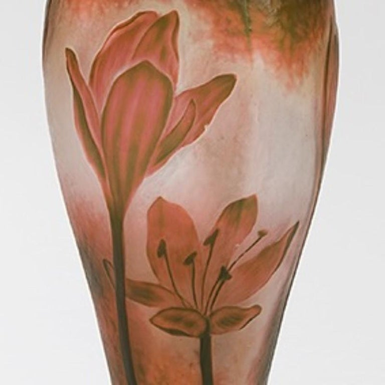 Art Nouveau French Cameo Glass Vase by Daum For Sale