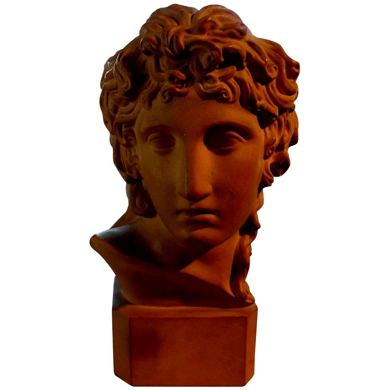 French Classical Terracotta Bust Signed R. D'Arly, Paris For Sale
