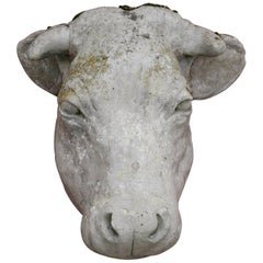 French Cow Head Sculpture from Outside of Butcher Shop