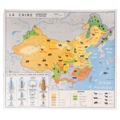 French Double Sided Educational School Poster of the Agriculture of China and US