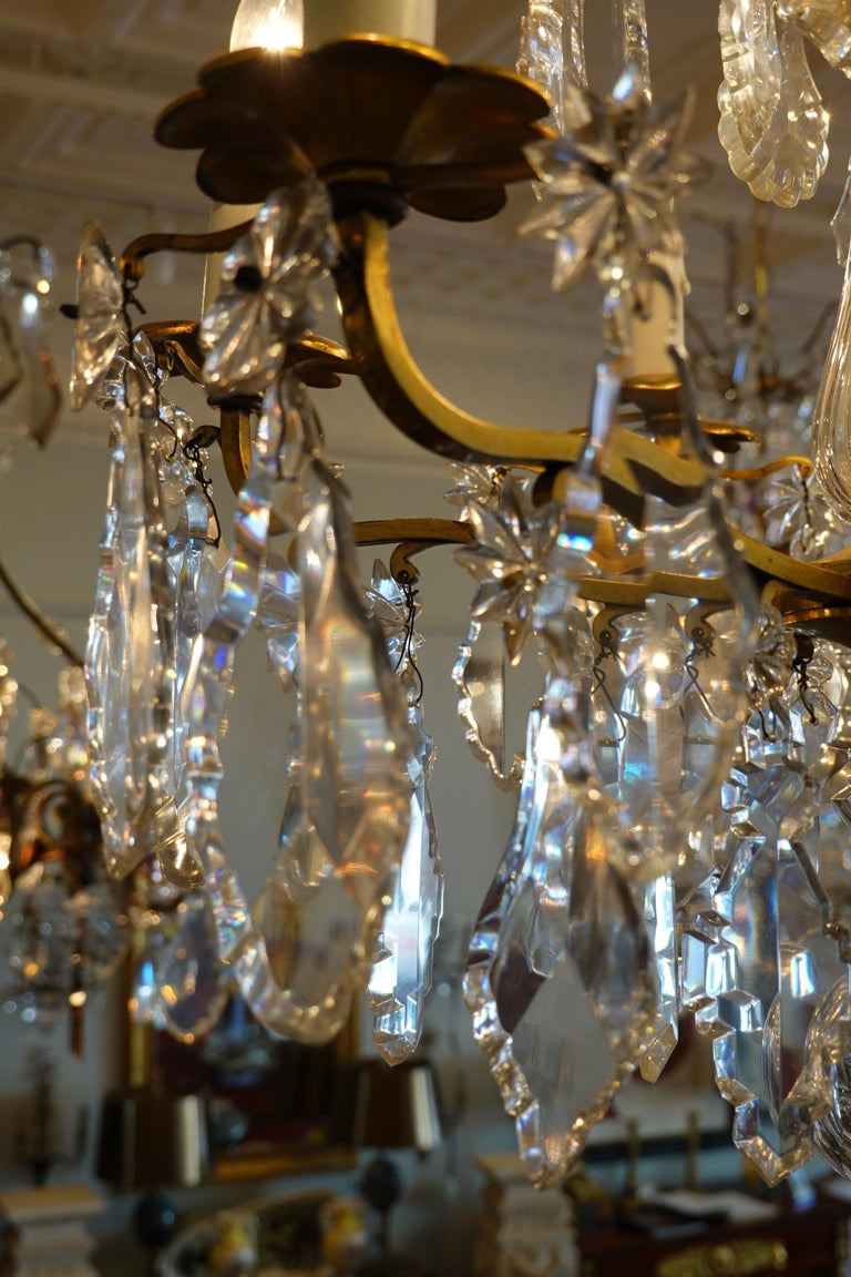 French Gilt-Bronze Chandelier with Exceptional Crystals For Sale 7