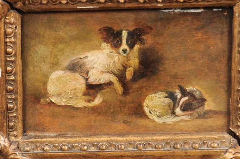 French Giltwood Framed Oil on Panel Painting of Papillon Dogs For Sale 1