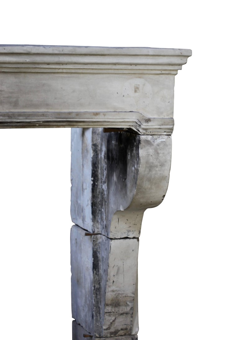 Carved French Grand Country Limestone Antique Fireplace Surround For Sale