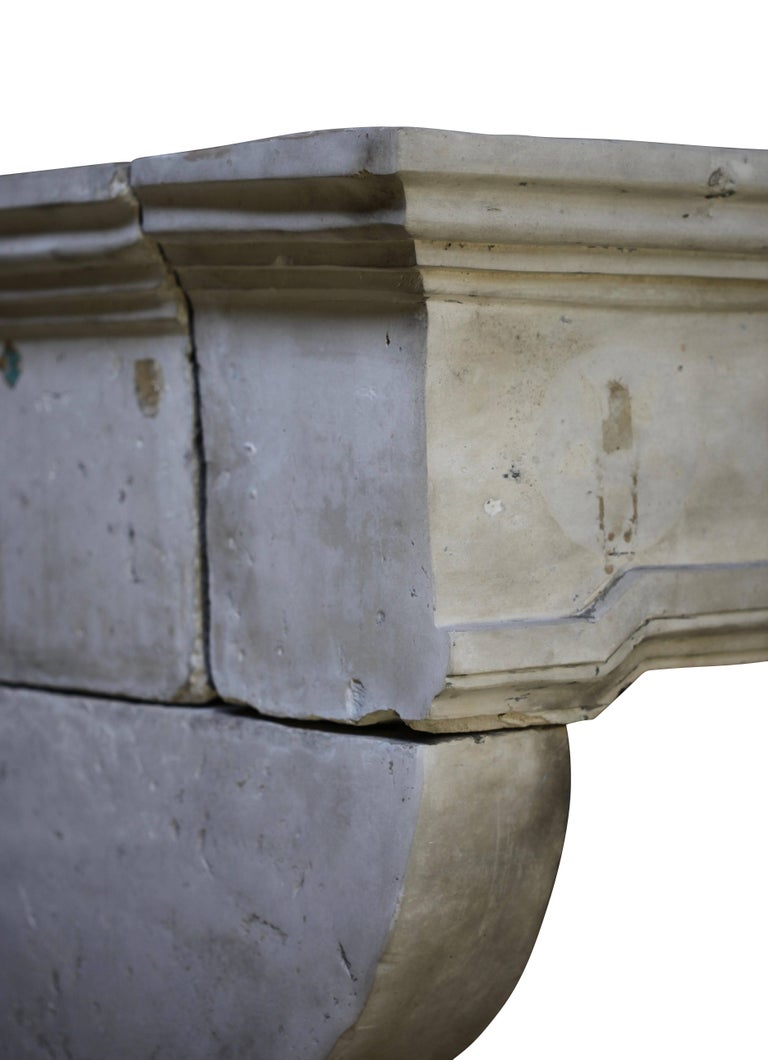 French Grand Country Limestone Antique Fireplace Surround For Sale 1