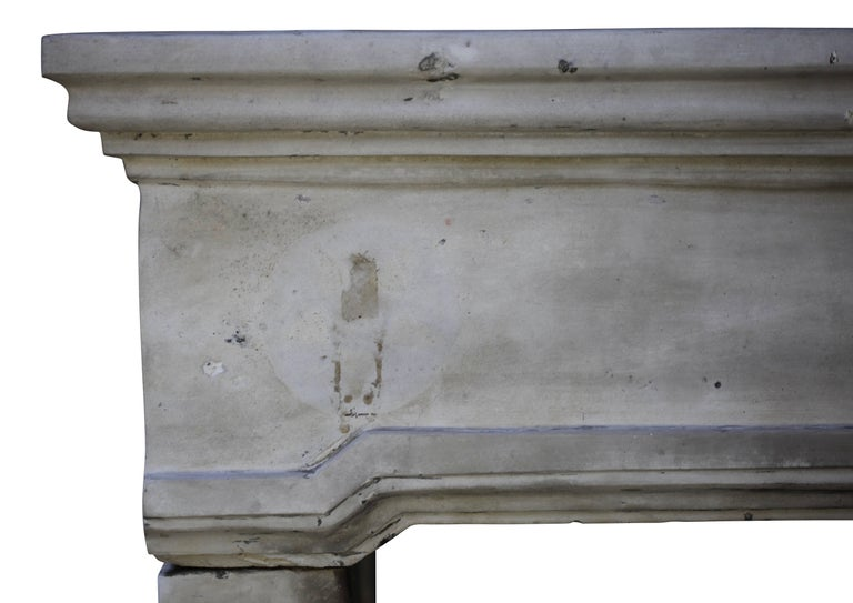 French Grand Country Limestone Antique Fireplace Surround For Sale 2
