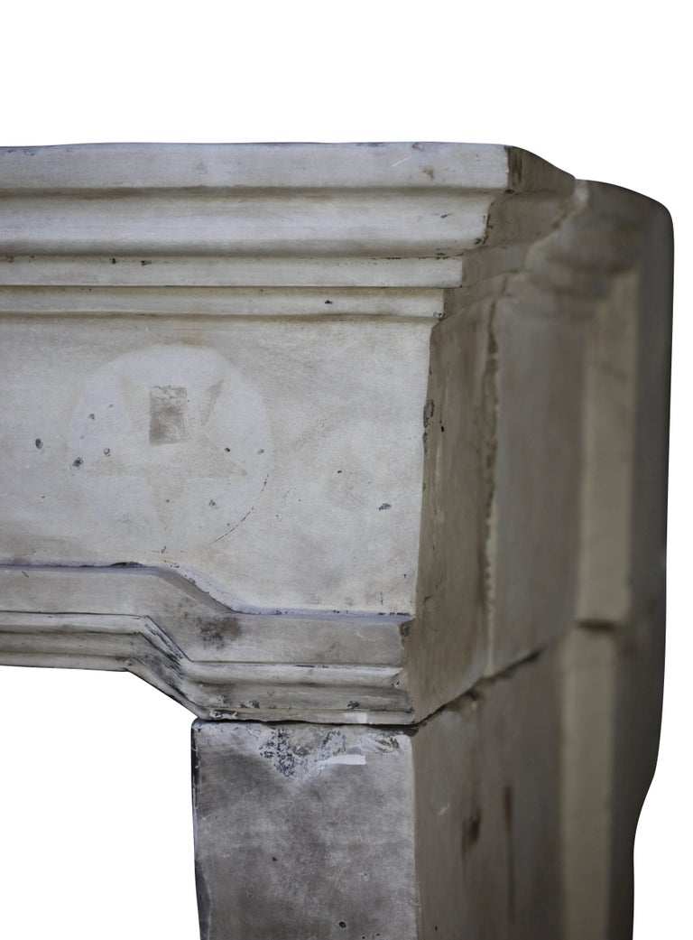 French Grand Country Limestone Antique Fireplace Surround For Sale 3
