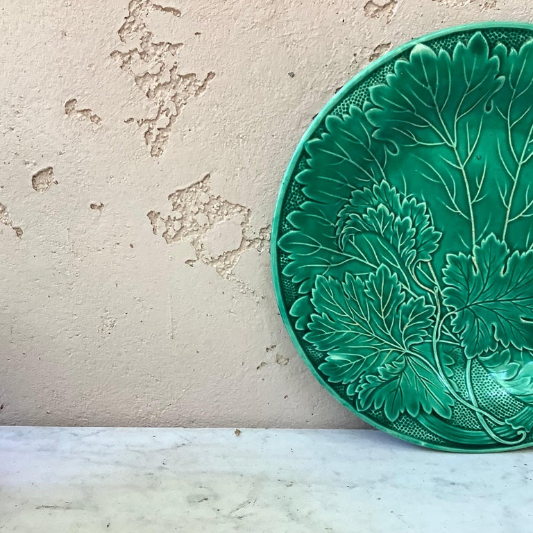 French green Majolica leaves plate signed Montereau, circa 1890.