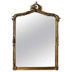 "French Hand Carved Beveled Glass ""Henri"" Mirror in Hand Gilt Frame"
