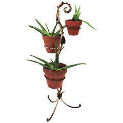 French Hand Forged Iron Foliage Plant Stand in White and Green Rusty Patina