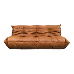 French Large Togo Sofa in Cognac Leather by Michel Ducaroy for Ligne Roset