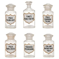 French Louis-Philippe Period 1840s Glass Apothecary Jars with Latin Labels