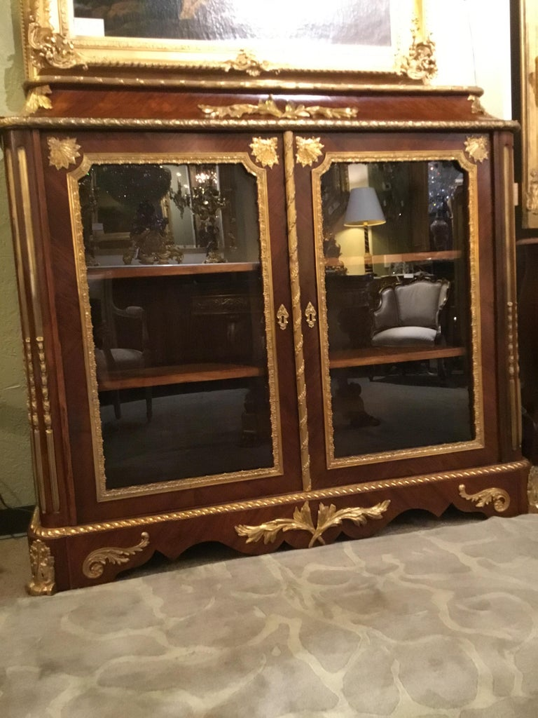 French Louis XV Style Gilt Bronze Mounted Two Door Vitrine/Bookcase 19th Century For Sale 6