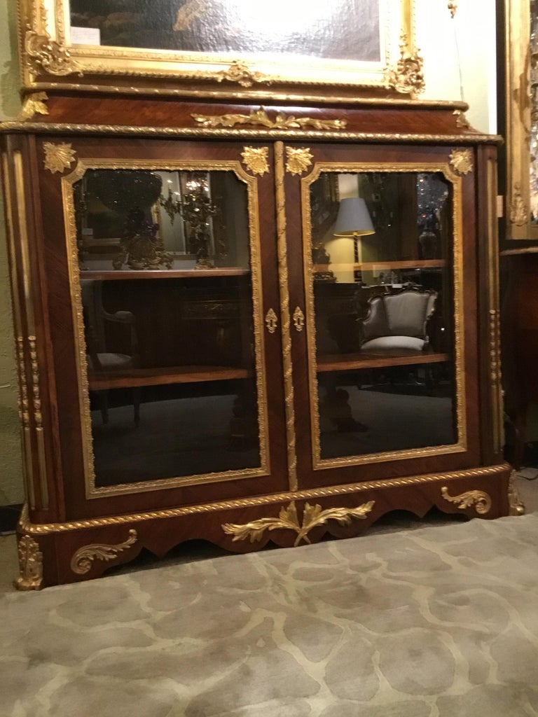 French Louis XV Style Gilt Bronze Mounted Two Door Vitrine/Bookcase 19th Century For Sale 7