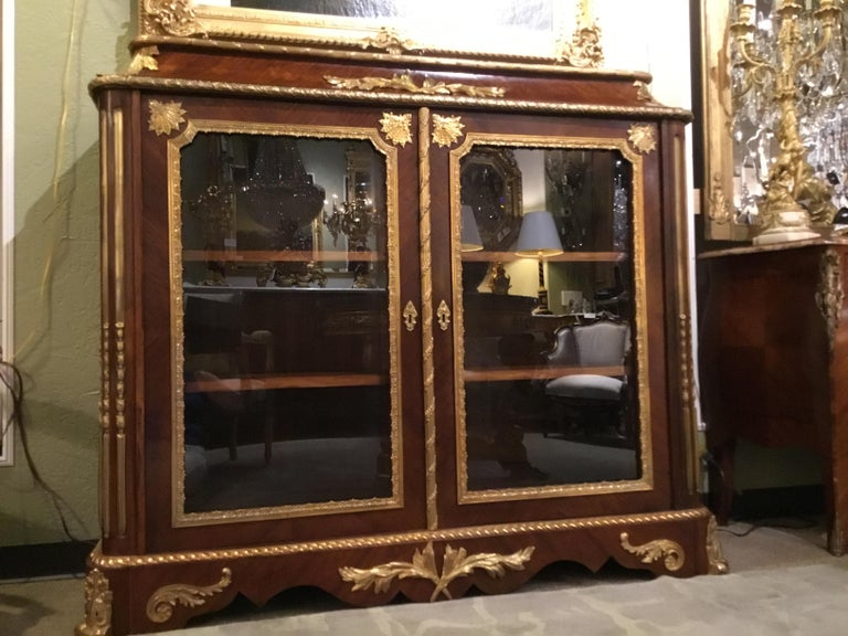 French Louis XV Style Gilt Bronze Mounted Two Door Vitrine/Bookcase 19th Century For Sale 10