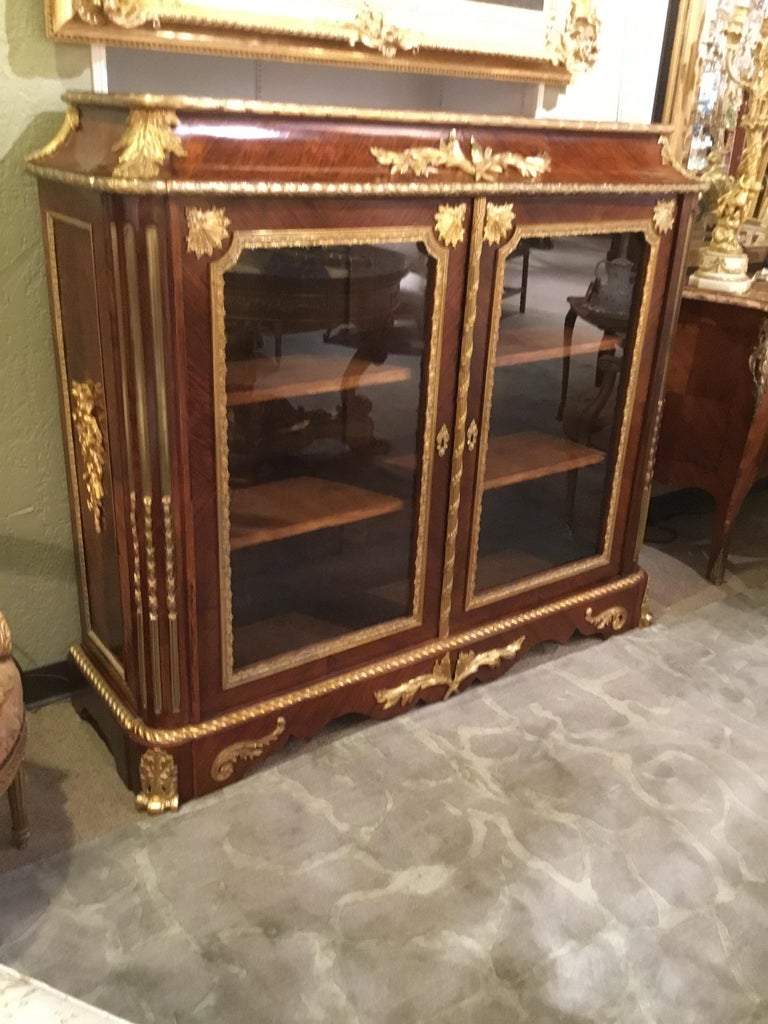 Mahogany French Louis XV Style Gilt Bronze Mounted Two Door Vitrine/Bookcase 19th Century For Sale