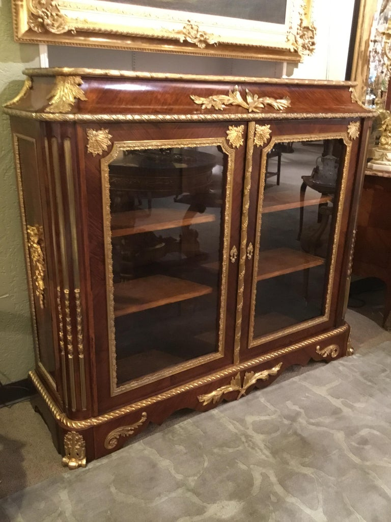 French Louis XV Style Gilt Bronze Mounted Two Door Vitrine/Bookcase 19th Century For Sale 1