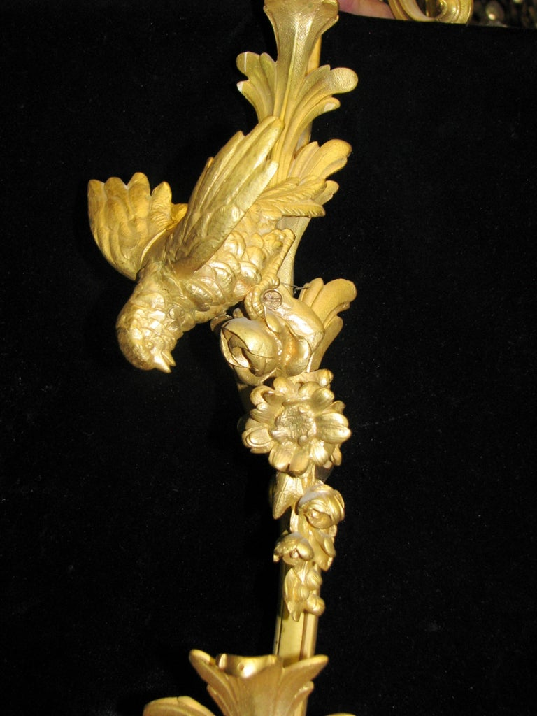 French Louis XV Style Ormolu Chandelier, 19th Century Signed BR For Sale 4