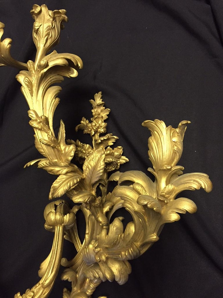 French Louis XV Style Ormolu Sconces, 19th Century For Sale 2