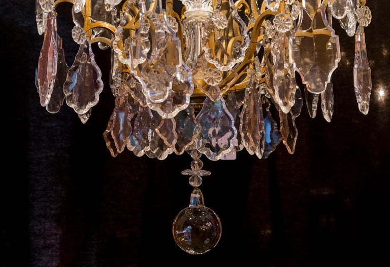 French Louis XVI Style Gilt-Bronze and Crystal Chandelier, circa 1890-1910 For Sale 10