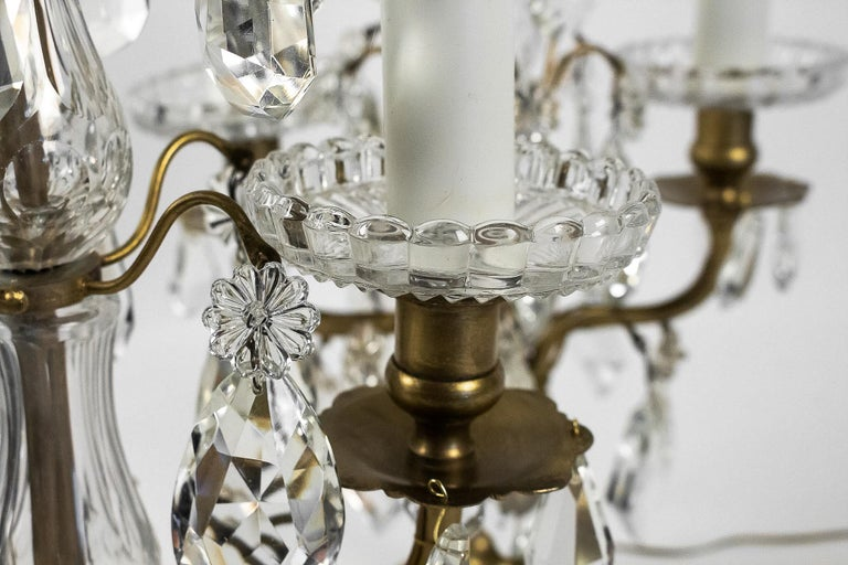 French Louis XVI Style, Pair of Gilt-Bronze and Cut-Crystal Girandole Lamps For Sale 6