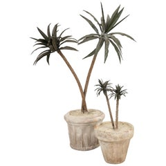 French Metal Palm Trees in Clay Pots