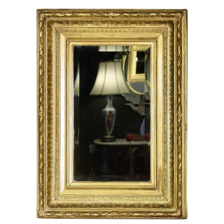 French Mid-19th Century Giltwood Louis XVI Style Mirror For Sale 2
