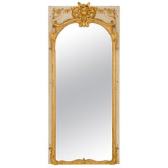 French Mid-19th Century Louis XV Style Patinated Gray and Giltwood Mirror