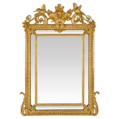 French Mid-19th Century Louis XVI Style Double Frame Giltwood Mirror