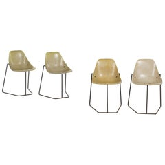 French Midcentury Chair Designed by René-Jean Caillette, 1957