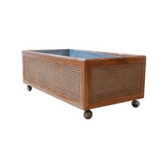 French Midcentury Rattan Internal Planter