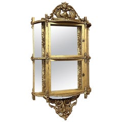 French Napoleon III Period Giltwood Wall Vitrine or Cabinet