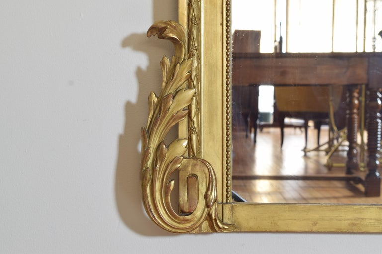 French Neoclassic Large Carved Giltwood and Gilt-Gesso Mirror, 3rdq 19th Cen. For Sale 5