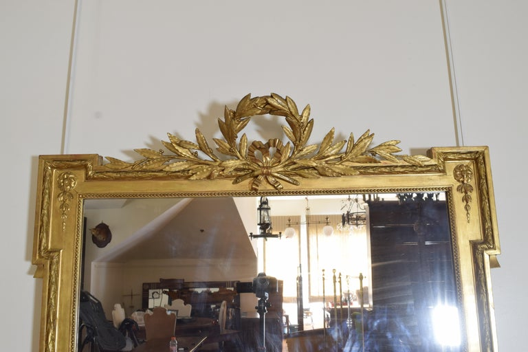Mid-19th Century French Neoclassic Large Carved Giltwood and Gilt-Gesso Mirror, 3rdq 19th Cen. For Sale