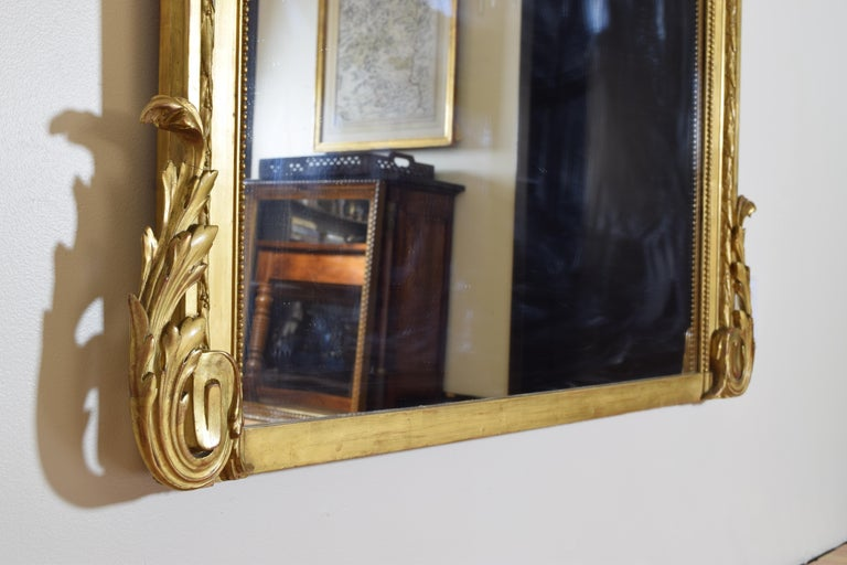 French Neoclassic Large Carved Giltwood and Gilt-Gesso Mirror, 3rdq 19th Cen. For Sale 4