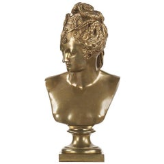 French Neoclassical Antique Bronze Bust of Diane De Poitiers, 19th Century