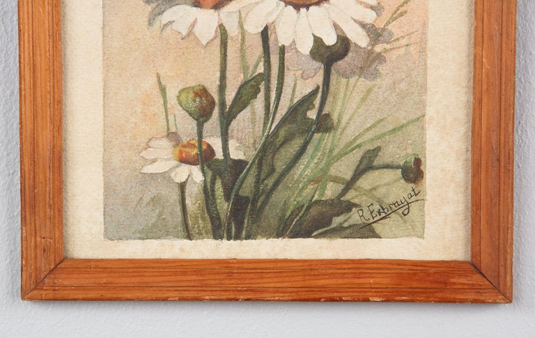French Oak Frame with Watercolor of Daisies by R. Exbrayat, 20th Century For Sale 2