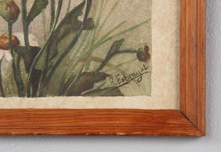 French Oak Frame with Watercolor of Daisies by R. Exbrayat, 20th Century For Sale 3